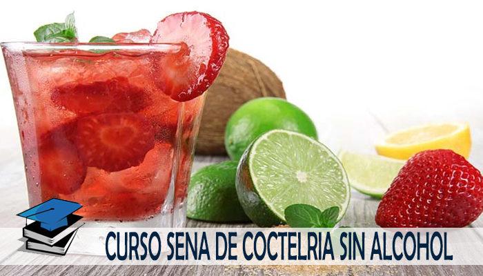 Curso SENA de Coctelería sin Alcohol