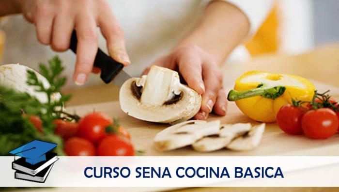 Curso SENA de Cocina Básica