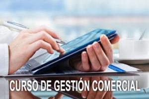 CURSO DE GESTION COMERCIAL MENU3